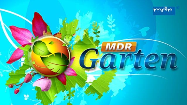 MDR - Garten