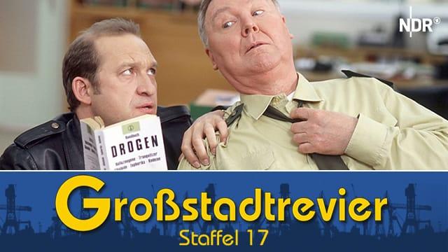 Großstadtrevier (Staffel 17)