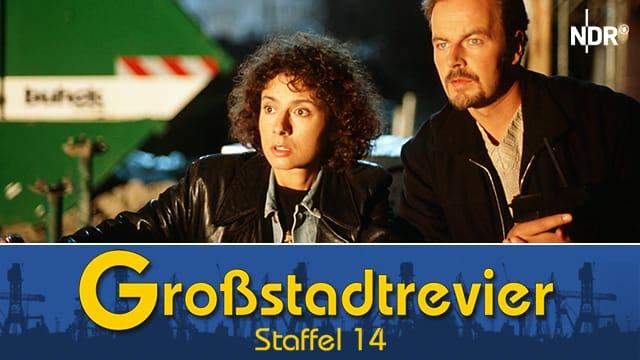 Großstadtrevier (Staffel 14)