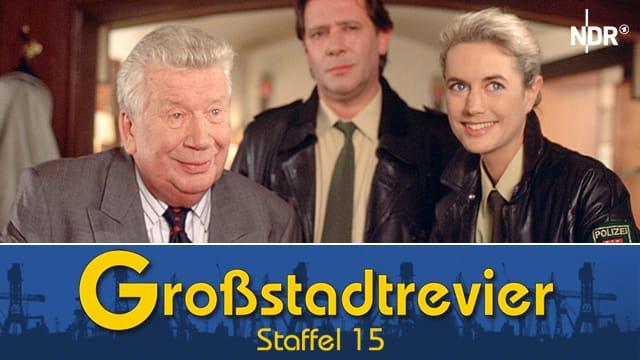 Großstadtrevier (Staffel 15)