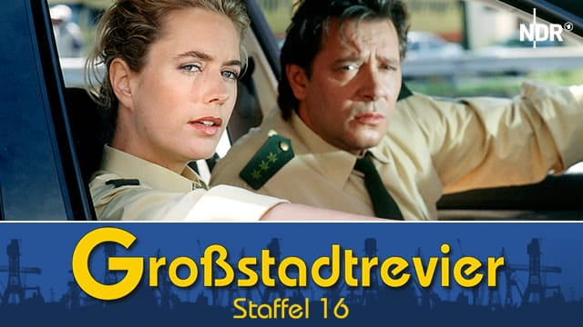 Großstadtrevier (Staffel 16)