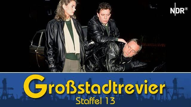 Großstadtrevier (Staffel 13)