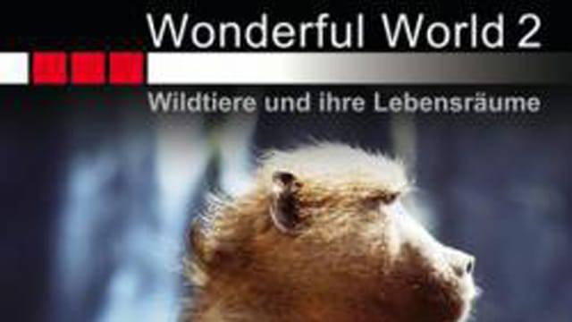 Wildtiere und ihre Lebensräume