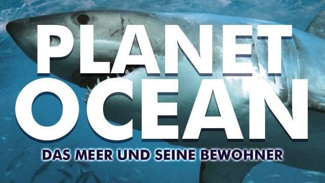 Planet Ocean - Das Meer und seine Bewohner